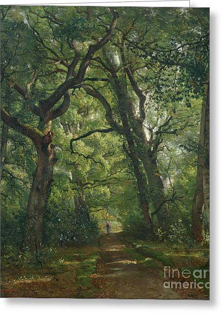 Bois Greeting Cards - Path in the Forest Greeting Card by Henri Joseph Constant Dutilleux