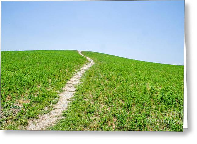 Path In The Green Canvas Print Greeting Card by Luca Lorenzelli