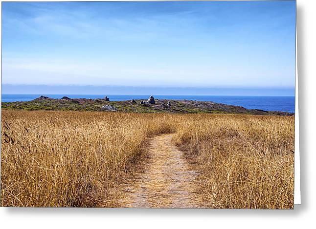 Big Sur Greeting Cards - Path Greeting Card by Joseph S Giacalone