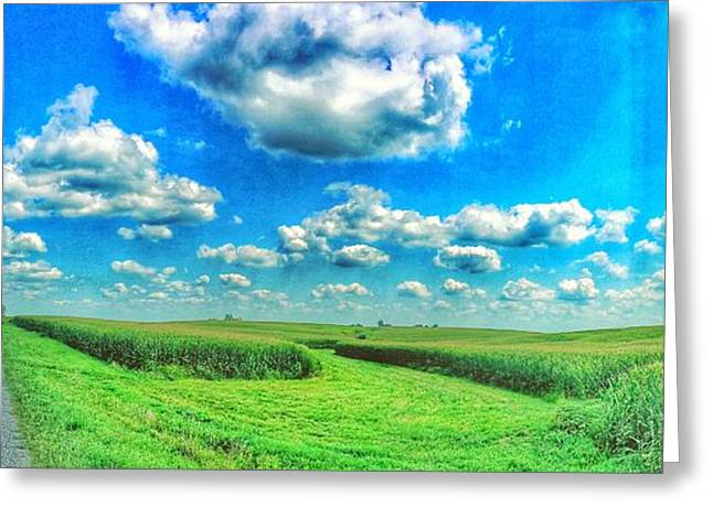 Jame Hayes Greeting Cards - Path less Traveled  Greeting Card by Jame Hayes
