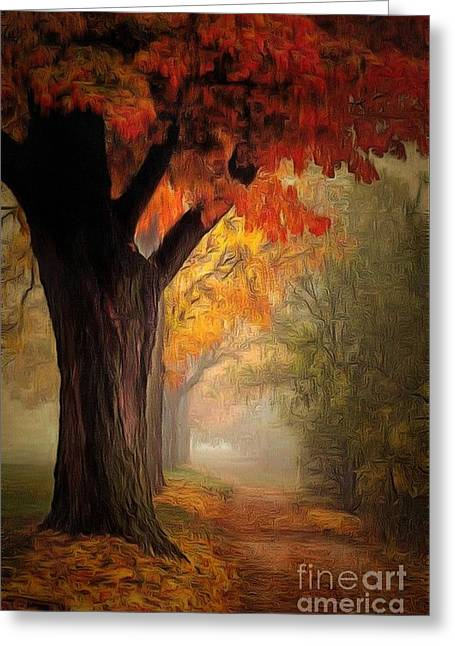 Print On Canvas Greeting Cards - Path LIT In Ambiance Greeting Card by Catherine Lott