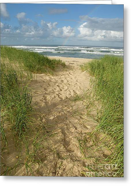 Tranquil Scene Escapism Greeting Cards - Path on beach leading to Ocean Greeting Card by Sami Sarkis