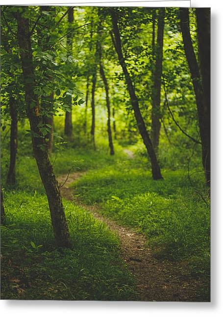 Path Greeting Cards - Path Greeting Card by Shane Holsclaw