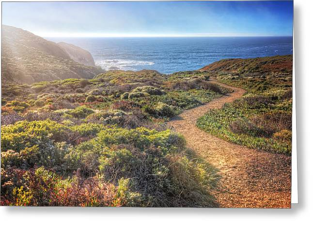 Marin County Greeting Cards - Path to South Rodeo Beach - Marin County California #2 Greeting Card by Jennifer Rondinelli Reilly
