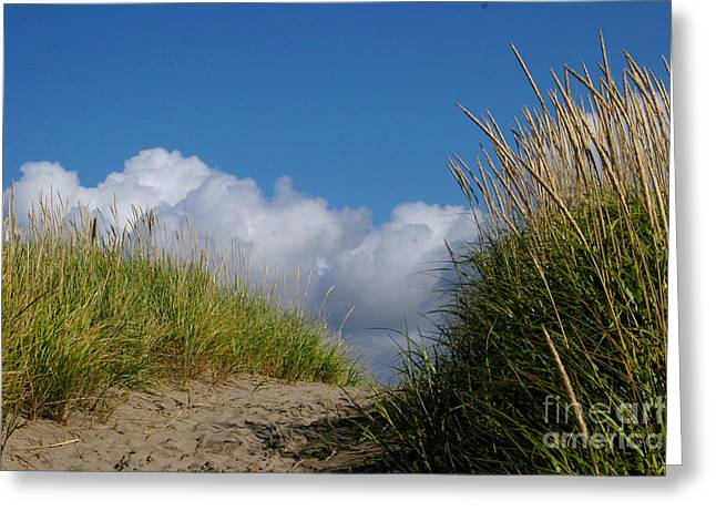 Pacific Ocean Prints Greeting Cards - Path to the Beach Greeting Card by Jeanette French