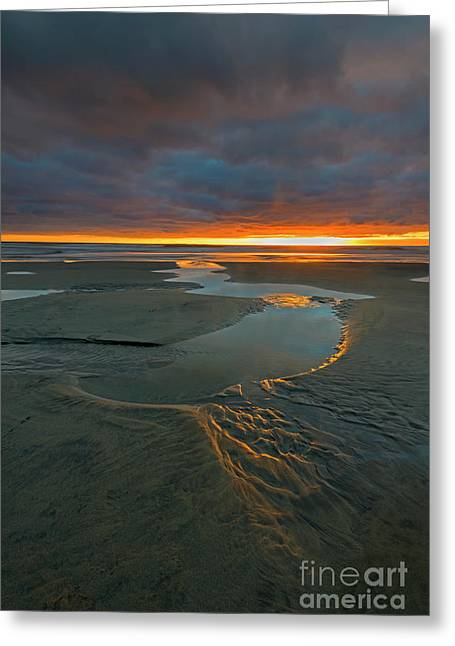 Path To The Sea Greeting Card by Mike Dawson