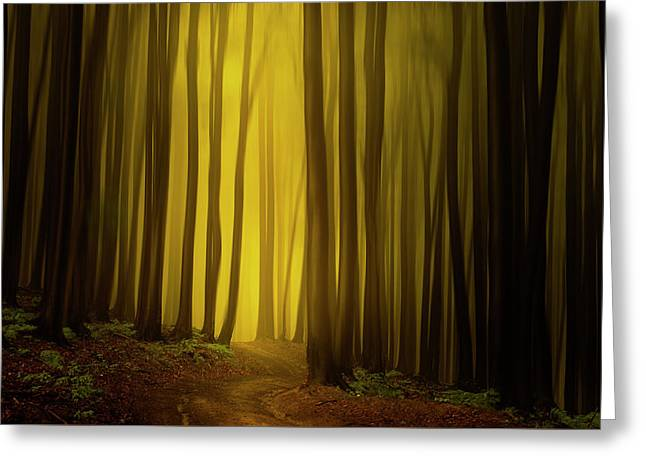 Path To The Source Greeting Card by Janek Sedlar