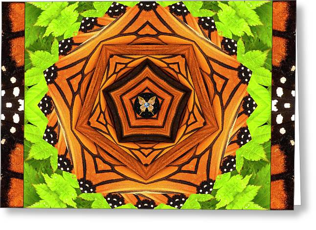 Chakra Rainbow Greeting Cards - Pathfinder Greeting Card by Bell And Todd