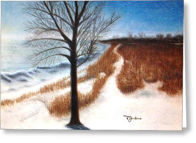 Chicago Pastels Greeting Cards - Pathway at Summit Beach Greeting Card by Terry Jenkins