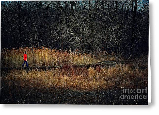 Pathway Greeting Card by Frank J Casella