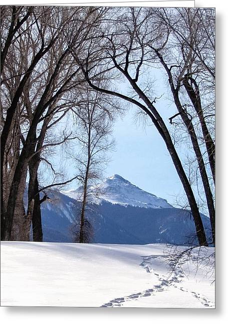 Pathway To Finnegan Peak Greeting Card by LeAnne Perry