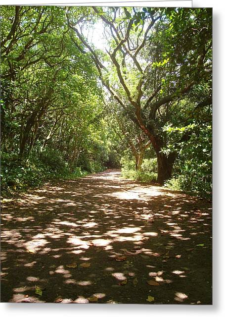 Paradise Road Greeting Cards - Pathway to Paradise in Waipio Valley Greeting Card by Misti Algeo