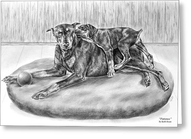 Puppies Drawings Greeting Cards - Patience - Doberman Pinscher and Puppy Print Greeting Card by Kelli Swan