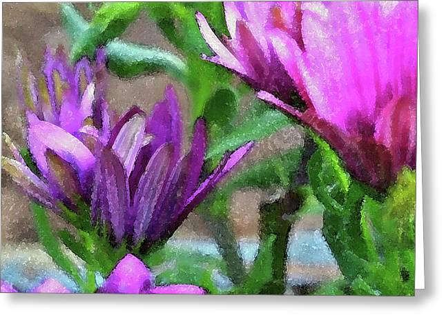 Floral Photographs Mixed Media Greeting Cards - Patience Greeting Card by Bonnie Bruno