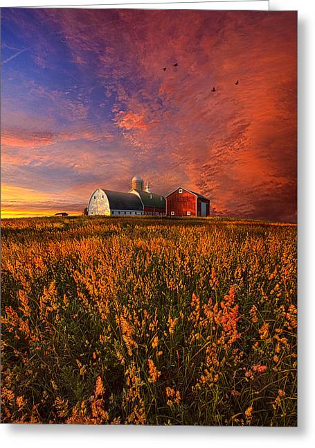 Red Barn Greeting Cards - Patience Greeting Card by Phil Koch