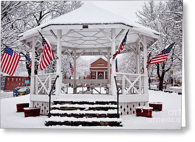 Worcester Greeting Cards - Patriotic Bandstand Greeting Card by Susan Cole Kelly