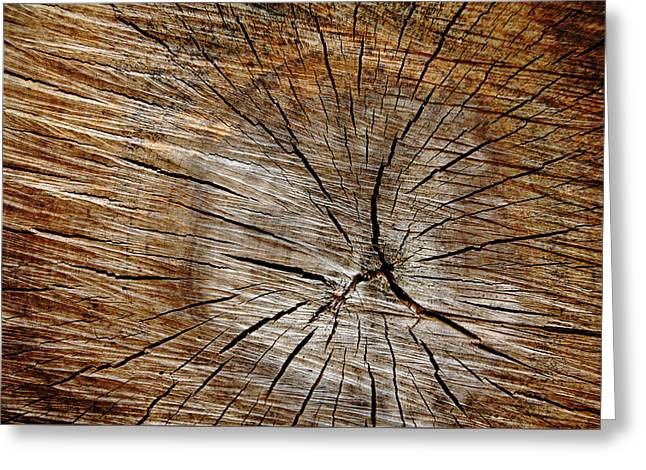 Patterned Wood Greeting Card by Debbie Oppermann