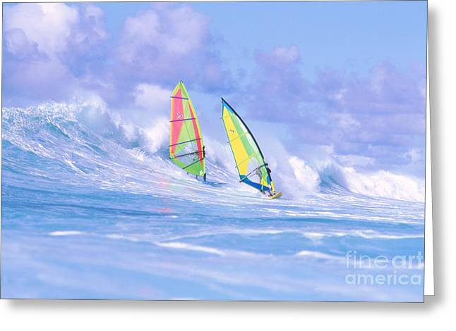 Ocean Art Photos Greeting Cards - Paul And Gary Greeting Card by Erik Aeder - Printscapes
