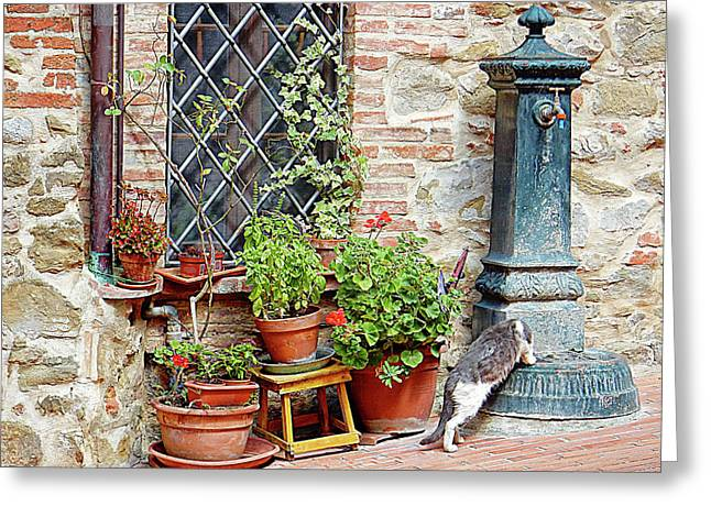 Pawse For A Drink In Paciano Greeting Card by Dorothy Berry-Lound