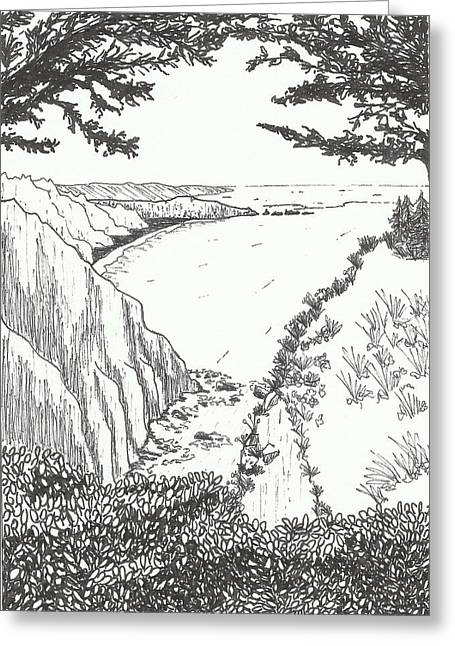 Pch Pen Drawing Greeting Card by Jaclyn Fields