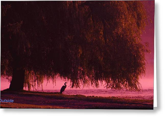 Willow Lake Greeting Cards - Peace Greeting Card by Jamie Miller
