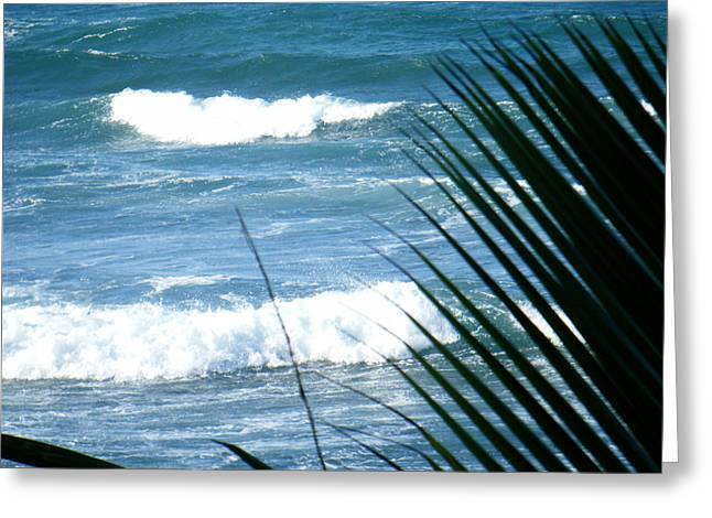 Rincon Beach Greeting Cards - Peace Greeting Card by Mary Anne Minerva