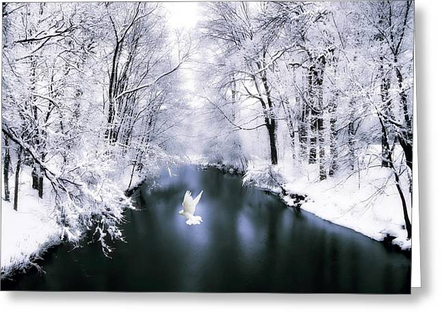 Winter Trees Digital Greeting Cards - Peace on Earth 2 Greeting Card by Jessica Jenney