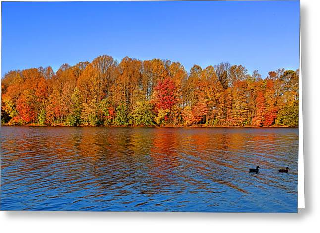 Peaceful Autumn Greeting Card by Olivier Le Queinec