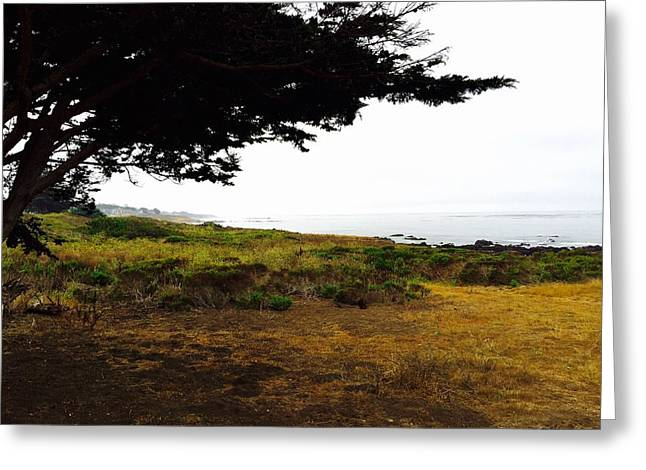 Peaceful Coast Greeting Card by Russell Keating
