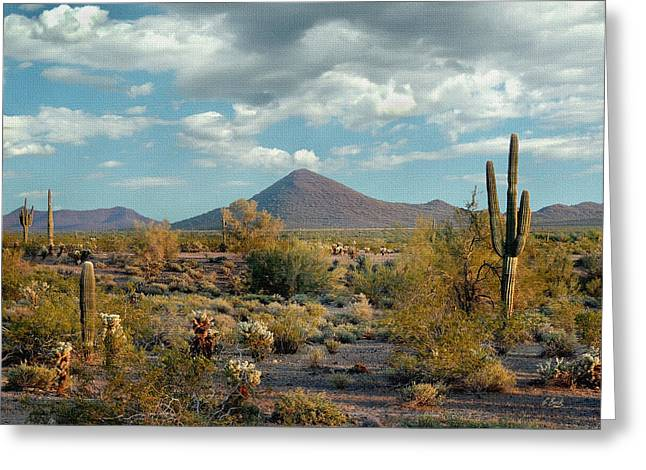 Cave Creek Western Greeting Cards - Peaceful Desert Greeting Card by Gordon Beck