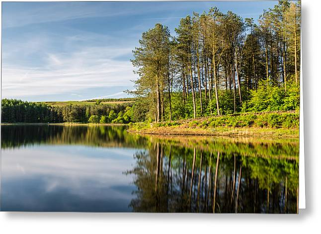 Peaceful Forest - Entwistle Forest. Greeting Card by Daniel Kay