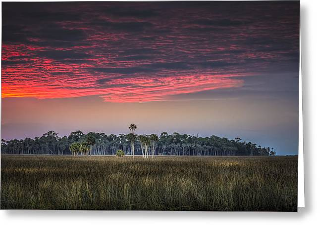 Peaceful Palms Greeting Card by Marvin Spates