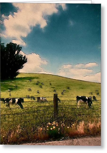 Sonoma County Digital Greeting Cards - Peaceful Pasture Greeting Card by John K Woodruff