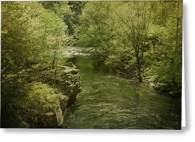 Tennessee River Greeting Cards - Peaceful River Greeting Card by Sandy Keeton