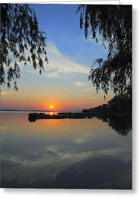 Weeping Greeting Cards - Peaceful Greeting Card by Frozen in Time Fine Art Photography