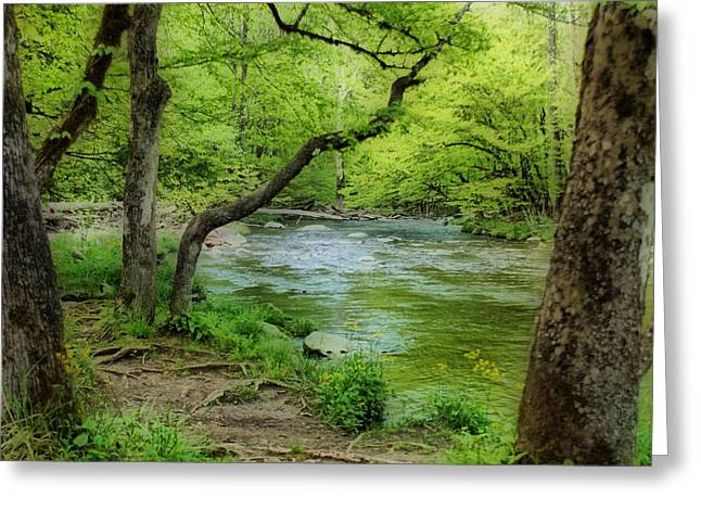 Tennessee River Greeting Cards - Peaceful Scene Greeting Card by Sandy Keeton