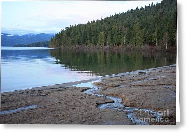 Reflection Of Trees Greeting Cards - Peaceful Spring Lake Greeting Card by Carol Groenen
