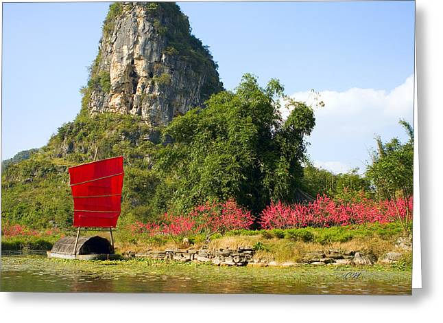 Boats In Water Greeting Cards - Peaceful Surroundings Greeting Card by Andowan Pebbles