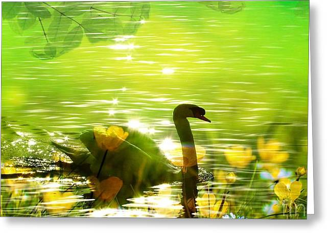 Swans... Greeting Cards - Peaceful Swan In Lake With Flowers Greeting Card by Annie Zeno