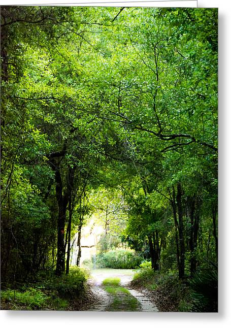 Jogging Greeting Cards - Peaceful Tranquility Greeting Card by Shelby  Young