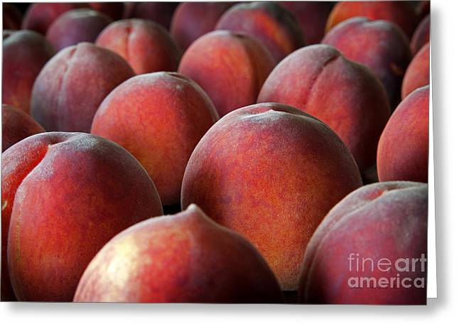 Harvest Time Photographs Greeting Cards - Peach Delight Greeting Card by John Stephens