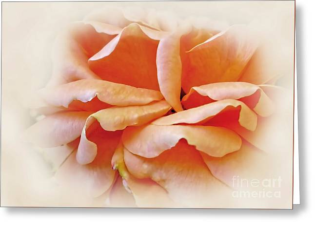 Kaye Menner Floral Greeting Cards - Peach Delight Greeting Card by Kaye Menner