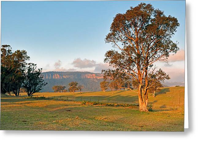 Fame Greeting Cards - Peach Tree Road Greeting Card by Nicholas Blackwell