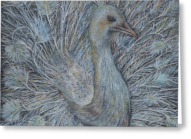 Exotic Pastels Greeting Cards - Peacock Art In Soft Pastels Greeting Card by Olga Hamilton