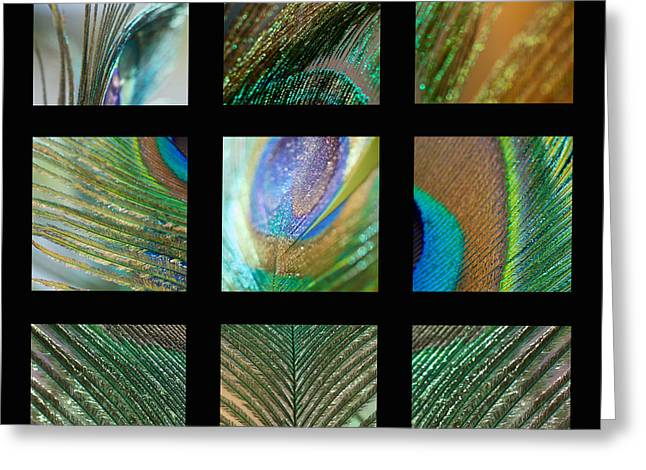 Peacock Feather Mosaic Greeting Card by Lisa Knechtel
