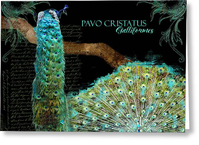 Peacock Greeting Cards - Peacock Pair on Tree Branch Tail Feathers Greeting Card by Audrey Jeanne Roberts