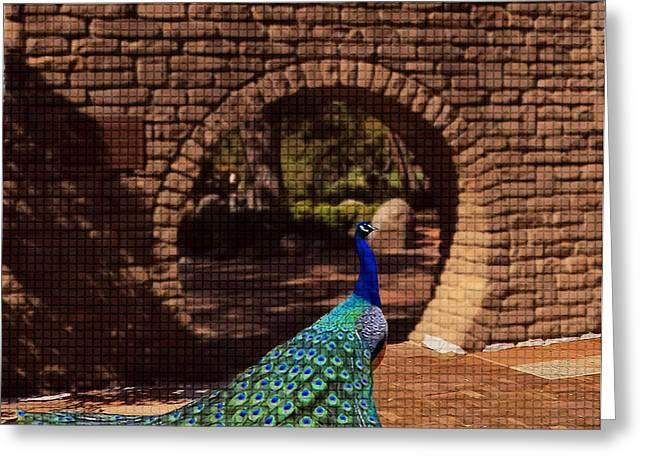 Bass Glass Art Greeting Cards - Peacock Greeting Card by Rezwana Muktadir