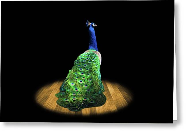 Peacock Wall Art Greeting Card by Steven Michael