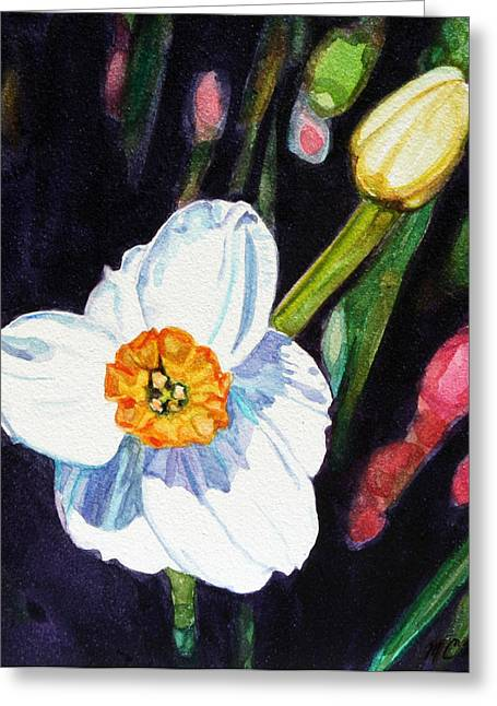 Spring Bulbs Greeting Cards - Peek-a-boo Daffodil Greeting Card by Christy Mullen