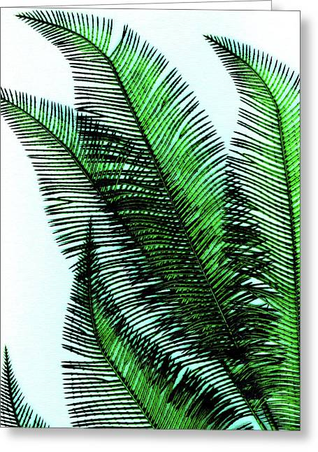 Tropical Island Mixed Media Greeting Cards - Peek Greeting Card by Slade Roberts
